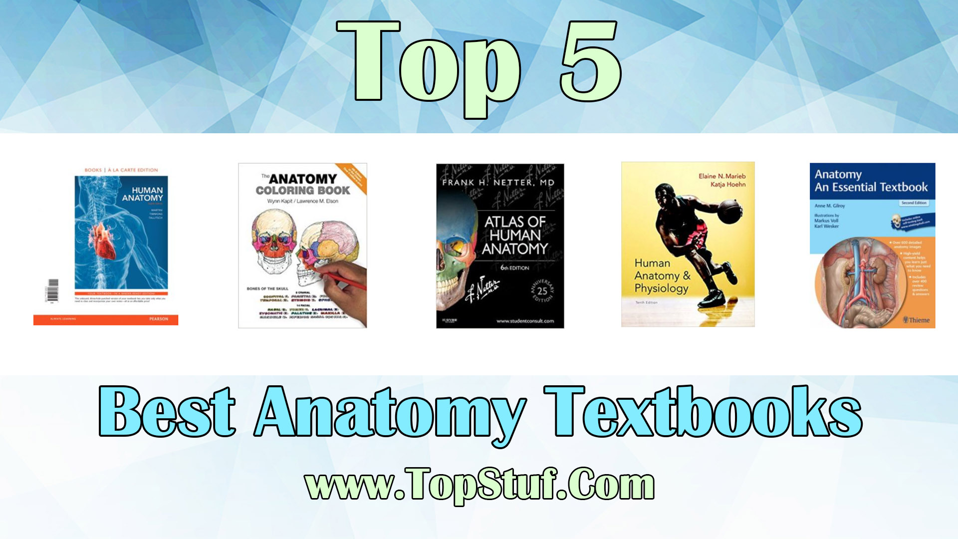 Best Anatomy Textbooks