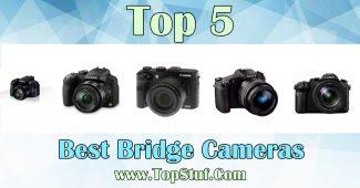 Bridge Cameras