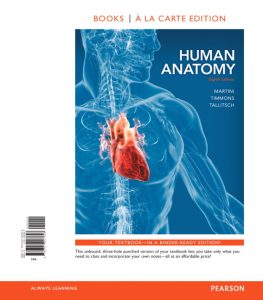 Top 5 Best Anatomy Textbooks - Become A Qualified Medical