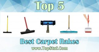Top 5 Best Carpet Rakes