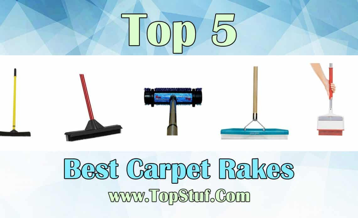 Top 5 Best Carpet Rakes