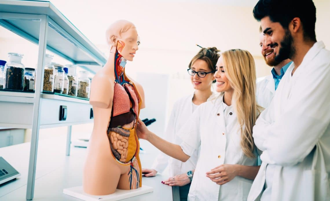 Best Anatomy Textbooks